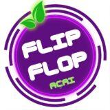 Família FliFlop