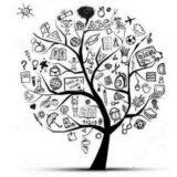 Conhecimento no cotidiano