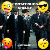 CONTATINHOS SHELBY